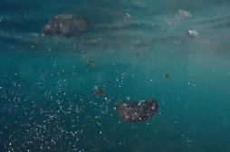 Les microplastiques présents dans l'eau pénètrent plus facilement l'organisme