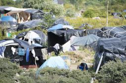 Jungle de Calais : la mission écarte le risque d'une épidémie