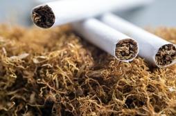 À ceux qui voudraient l'utiliser pour se protéger contre le Covid-19, rappel des effets désastreux de la nicotine