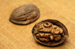 Obésité : manger des noix tous les jours fait baisser le cholestérol