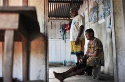 Le Brésil menacé par un virus transmis par des moucherons