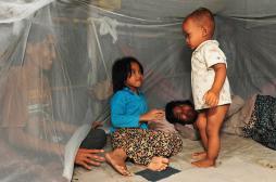 Paludisme : la résistance au traitement confinée à l'Asie du Sud-Est