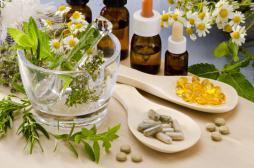 Phytothérapie : le retour vers la médecine par les plantes