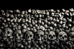 Découverte : la peste bubonique est apparue il y a au moins 4000 ans