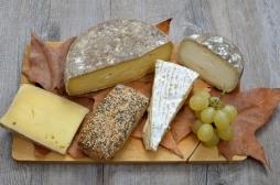 IG Nobel : des travaux français sur le fromage récompensés