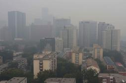 L'OMS veut intensifier la lutte contre les polluants de courte durée de vie