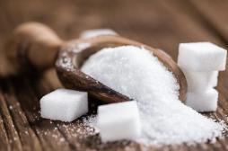Un excès de sucre peut nuire au développement cérébral des enfants
