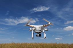 IVG : des féministes livrent la Pologne en pilule par drone