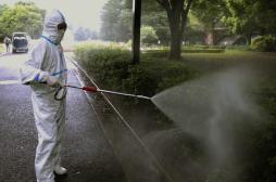 Chikungunya : le Haut conseil de santé publique défend le malathion