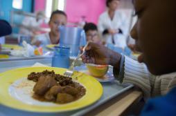 Cantine : les enfants mangent trop vite