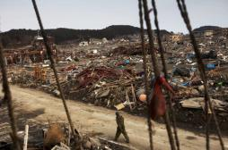 OMS : un réseau pour lutter contre les futures catastrophes