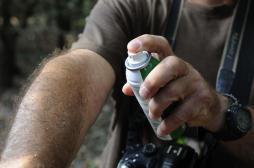 Moustiques : le palmarès 2014 des départements les plus touchés