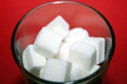Régimes : éliminer les sucres n'est pas efficace