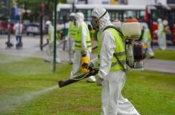 Italie: 64 cas de chikungunya dans la région de Rome