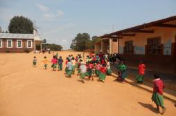 Paludisme : 21 pays pourraient l'éradiquer d'ici quatre ans