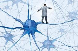 Alzheimer : les premières lésions visibles dans le cerveau dès 40 ans