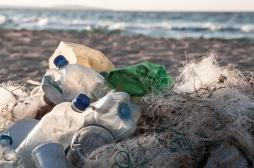 Une larve pour débarrasser les océans des plastiques résistants
