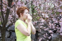 Pollens : le HCSP veut des messages sanitaires partout