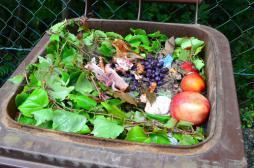 Hôpital : une gaspillage alimentaire de 420 millions d'euros