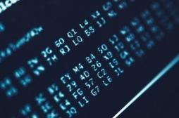 Cancer du sein : les algorithmes, efficaces pour détecter les métastases