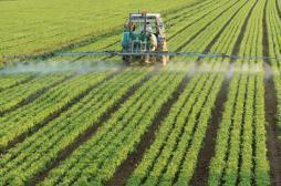 Pesticides : la carte de France des personnes exposées
