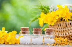 Homéopathie : l'Arnica favoriserait la cicatrisation