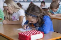 Epidémie de teigne dans une école en Lorraine : quels sont les risques pour les enfants ?