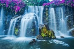 Etats-Unis: le succès de l'eau «non» filtrée pose des questions sanitaires
