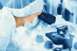 Des ovules humains ont été développés en laboratoire jusqu'à ce qu'ils soient prêts à être fécondés