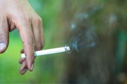 Maladies cardiovasculaires : comment le tabac affecte nos artères