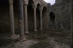 Antiquité  : l'empire romain était infesté de parasites
