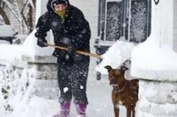 Le retour du  froid : 10 questions pratiques.