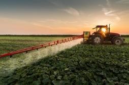 Pesticides : une étude confirme leurs dangers pour le cerveau