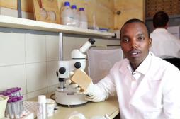 Afrique : un savon pour combattre le paludisme