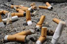 Encre des poumons : la campagne anti-tabac qui choque