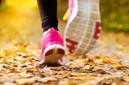 Perdre du poids : pourquoi l'exercice physique ne suffit pas
