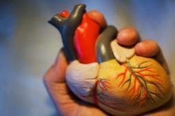 Toulouse : des chirurgiens cardiaques...