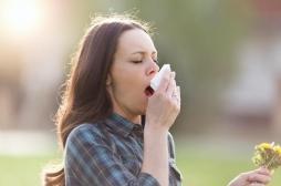 Réchauffement climatique : la saison des allergies démarre de plus en plus tôt