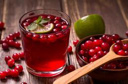 Antioxydants : la cranberry aurait des effets au-delà de l'infection urinaire