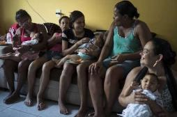 Zika : les microcéphalies seraient liées à une seule mutation