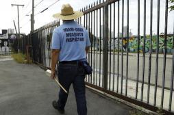 Miami : un épandage d'insecticide prévu pour lutter contre Zika