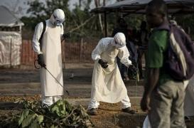 Ebola: 4 survivants sur 5 ont des séquelles