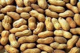 Allaitement : consommer des cacahuètes réduit les risques d'allergie