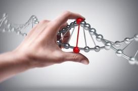 Maladie de Charcot : les causes génétiques auraient été sous-estimées