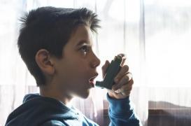Asthme : de nouvelles pistes pour expliquer l'immunité de certains enfants