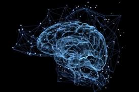 Chimiothérapie : une molécule contre les effets indésirables sur le cerveau