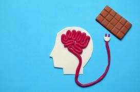 Pourquoi la faim semble donner meilleur goût aux aliments