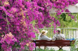 Seniors : 70 % restent à domicile après 85 ans