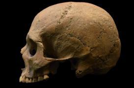 Le paludisme a déstabilisé l'Empire romain