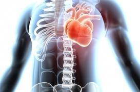 Fibrillation atriale : une